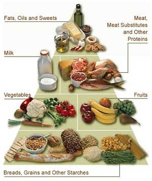 Meal balance and dieting is a key part in any athletes' success, especially for a wrestler.  Image by The Long Island Wrestling Association website. http://longislandwrestling.com/liwa/strengthandcondition/IronEdge/nutrition101.htm